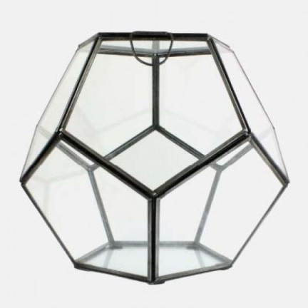 Terrarium - $55 Weego Home